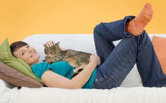Having a cat promotes heart health