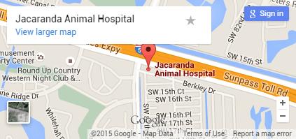 Jacaranda Map